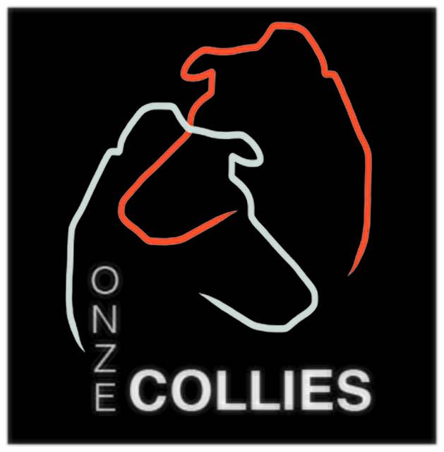 Ontwerp logo voor www.onzecollies.nl